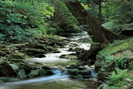 printing_workflows_stream_river