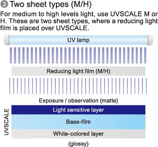 [Image] (2) Two sheet type (M/H)