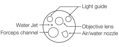 EC-600WM/ WI/ WL