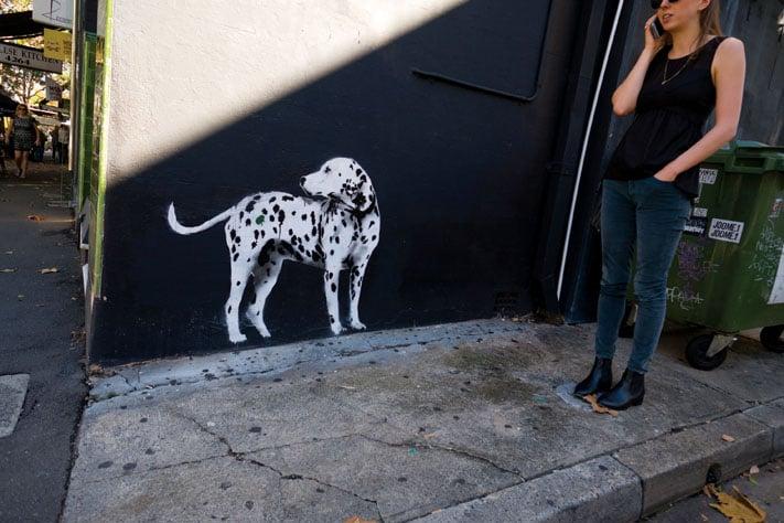 Graffitti_Surry_Hills_Sydney_2014.jpg