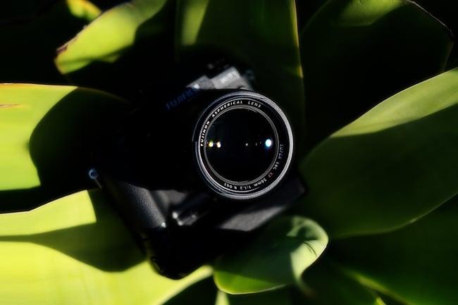 XF56mm_-_Leigh_Diprose_010