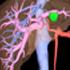 Synapse 3D
