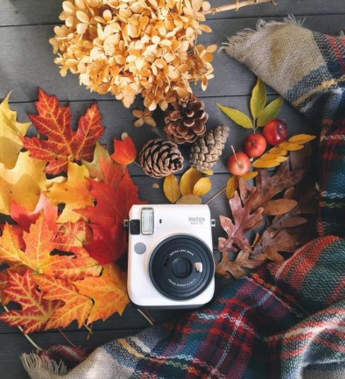 fall flat lay.jpg